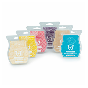 Scentsy Bars, Scentsy Bricks, candle bars, candle tarts, wax tarts, wax bars, scentsy wax