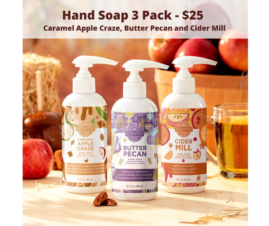 Scentsy 2020 Fall Harvest Collection Hand Soap 3-Pack