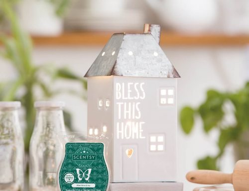 August 2020 – Bless this Home Scentsy Warmer