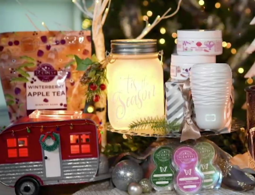 2020 Scentsy Holiday Collection